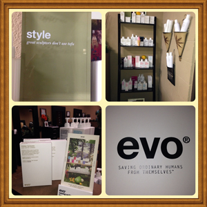 Evo Hair Care Products